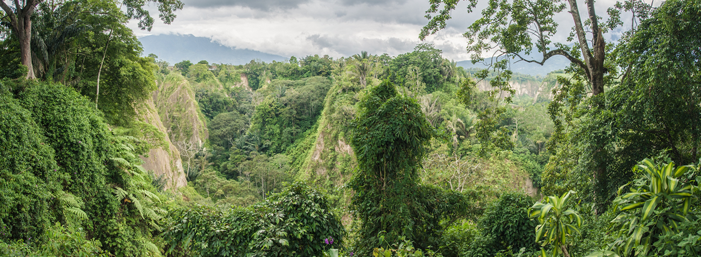 Ngarai Sianok–Bukit tinggi | the atmojo