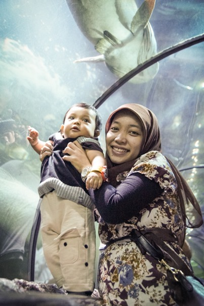 Sea World – Ancol | the atmojo